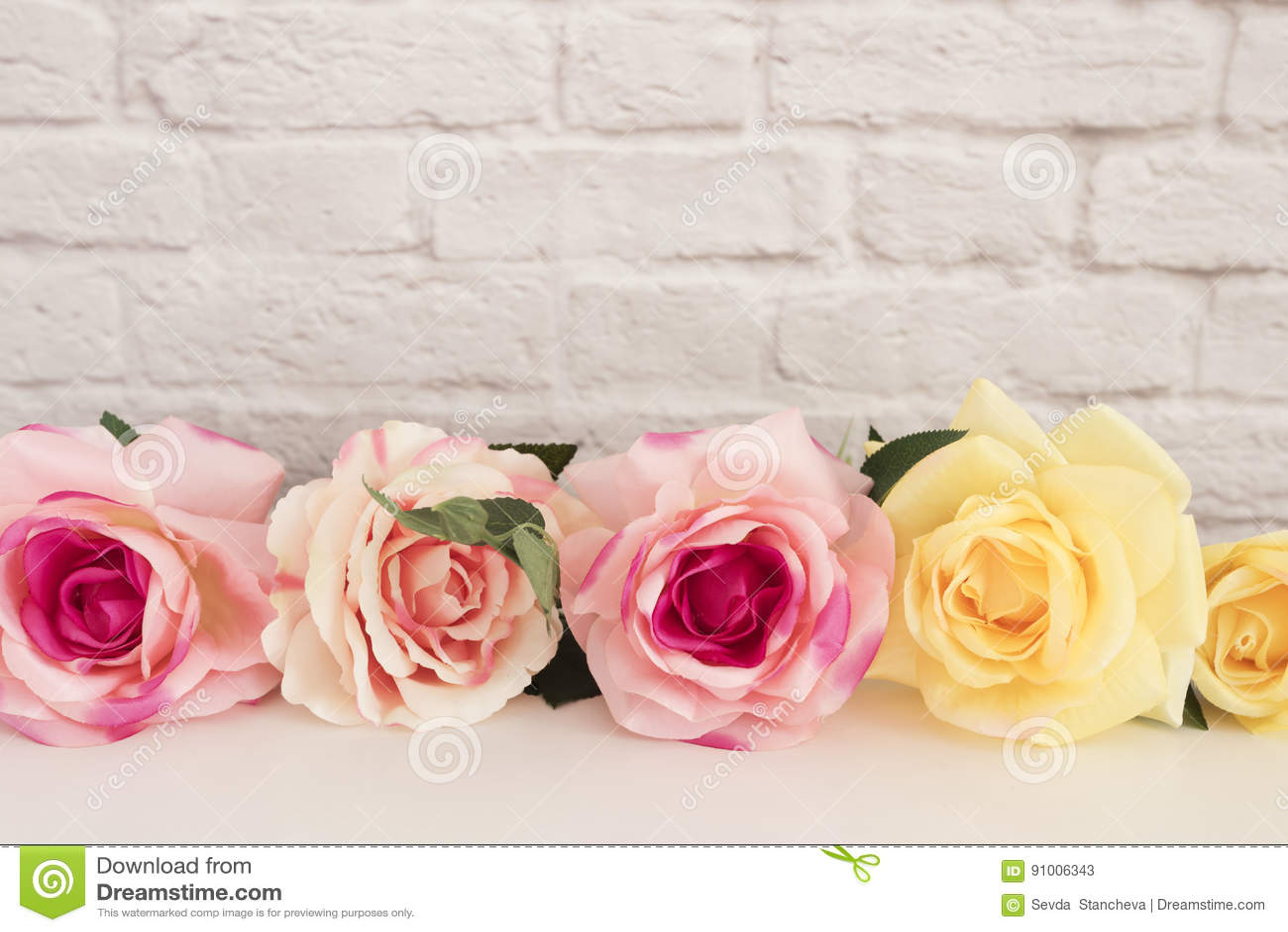 Rose Mock Up rosada Fotografía común diseñada Marco floral, mofa diseñada de la pared para arriba Rose Flower Mockup, Valentine M