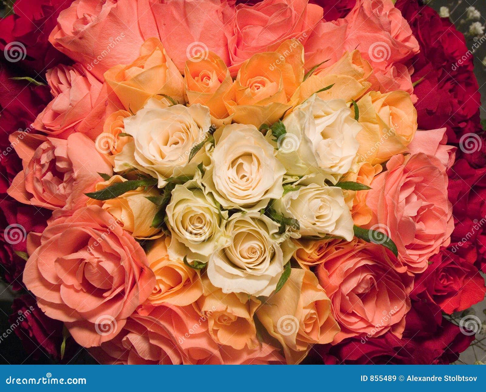 Rose-Muster
