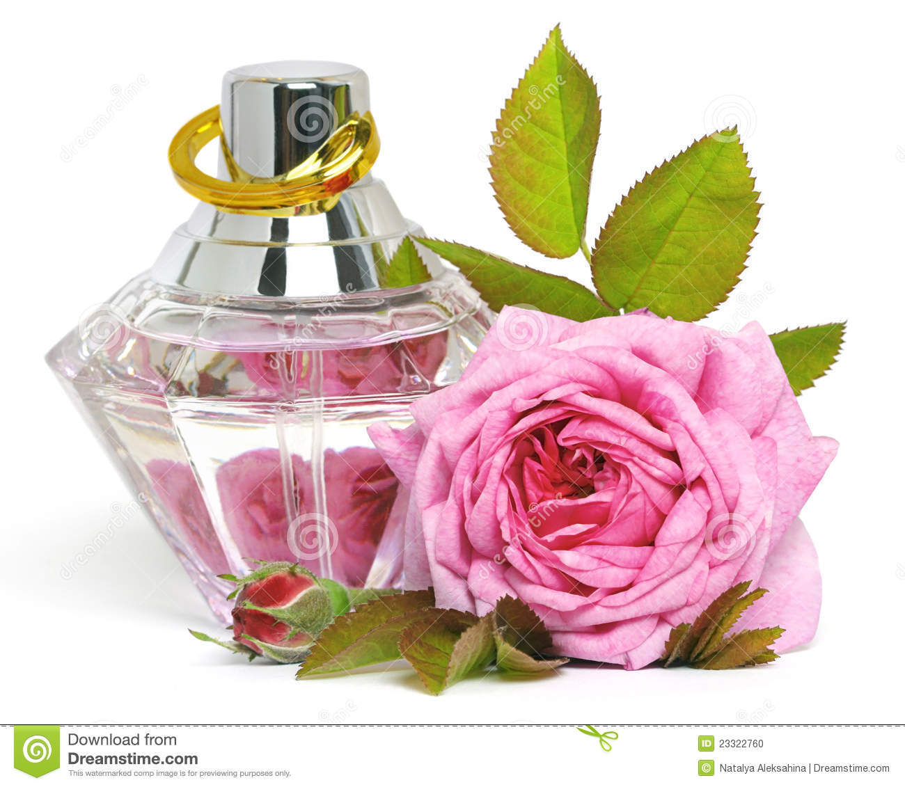 Women's perfume in beautiful bottle and rose on white background.