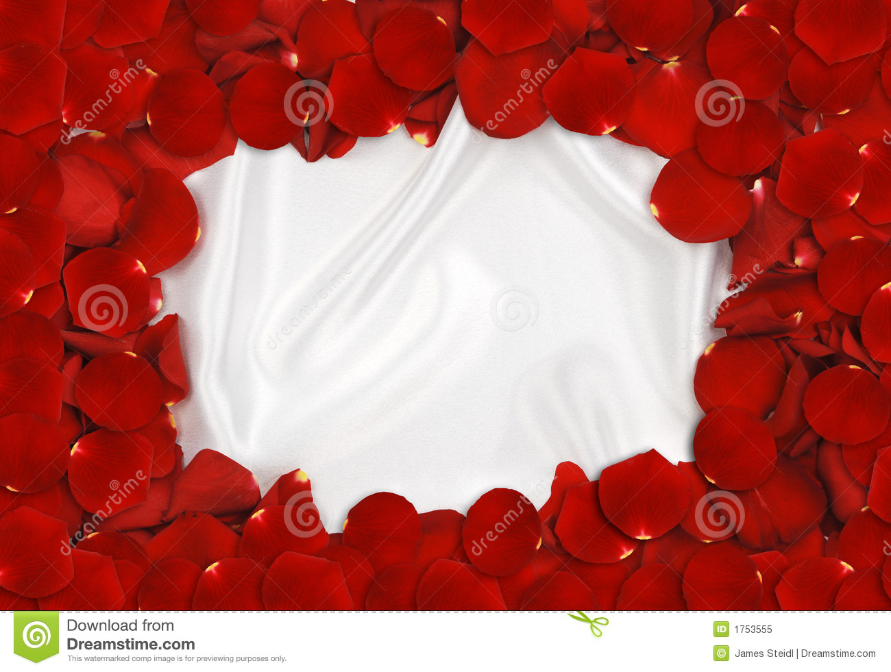 Rred rose petals forming a frame around white satin fabric.