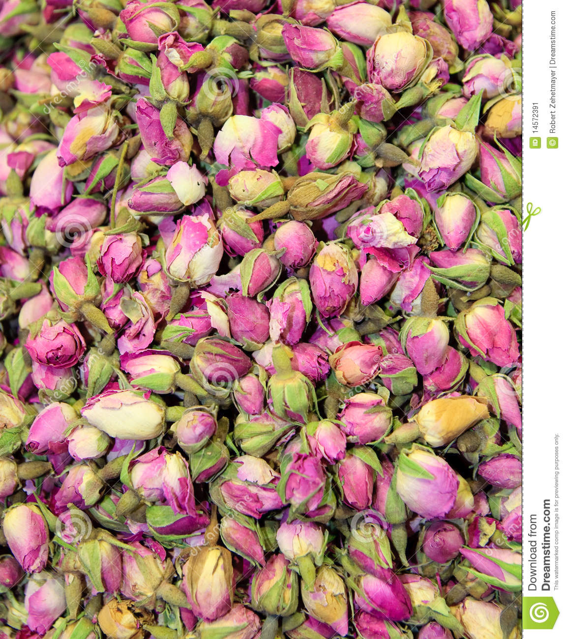 Rose Petal Tea Stock Image - Image: 14572391