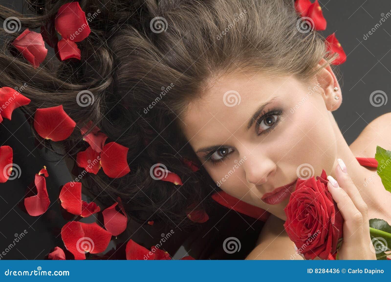 Rose and petals