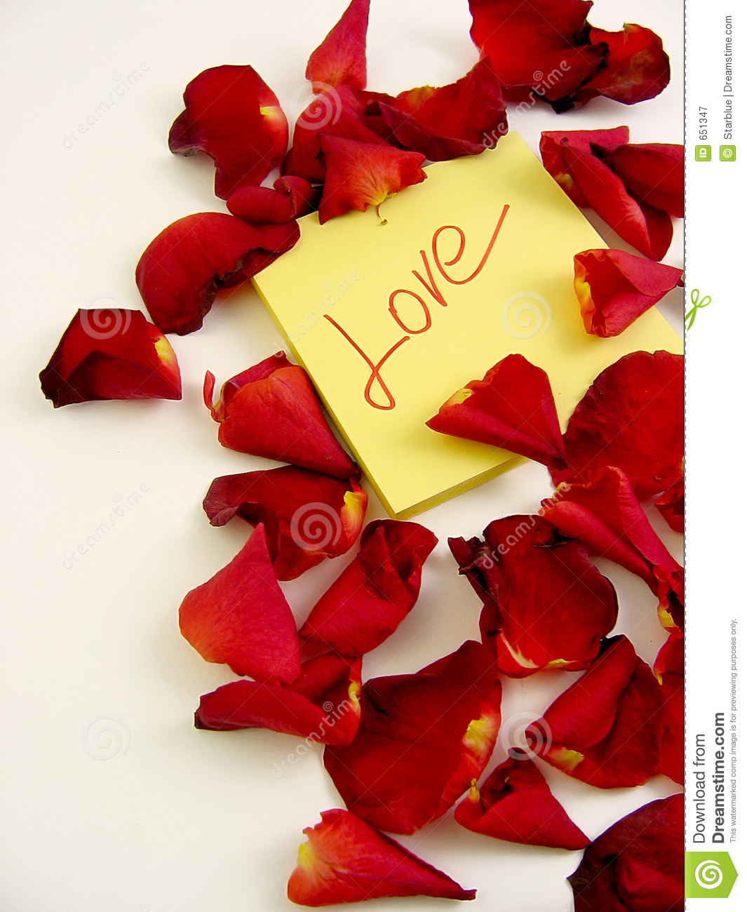 Rose Petals With Love Message Stock Image - Image of romance, rose