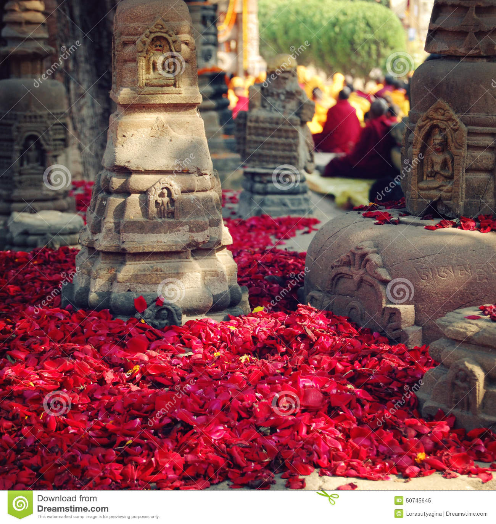 Rose petals for offering respect - retro filter photo. Bodh Gaya.