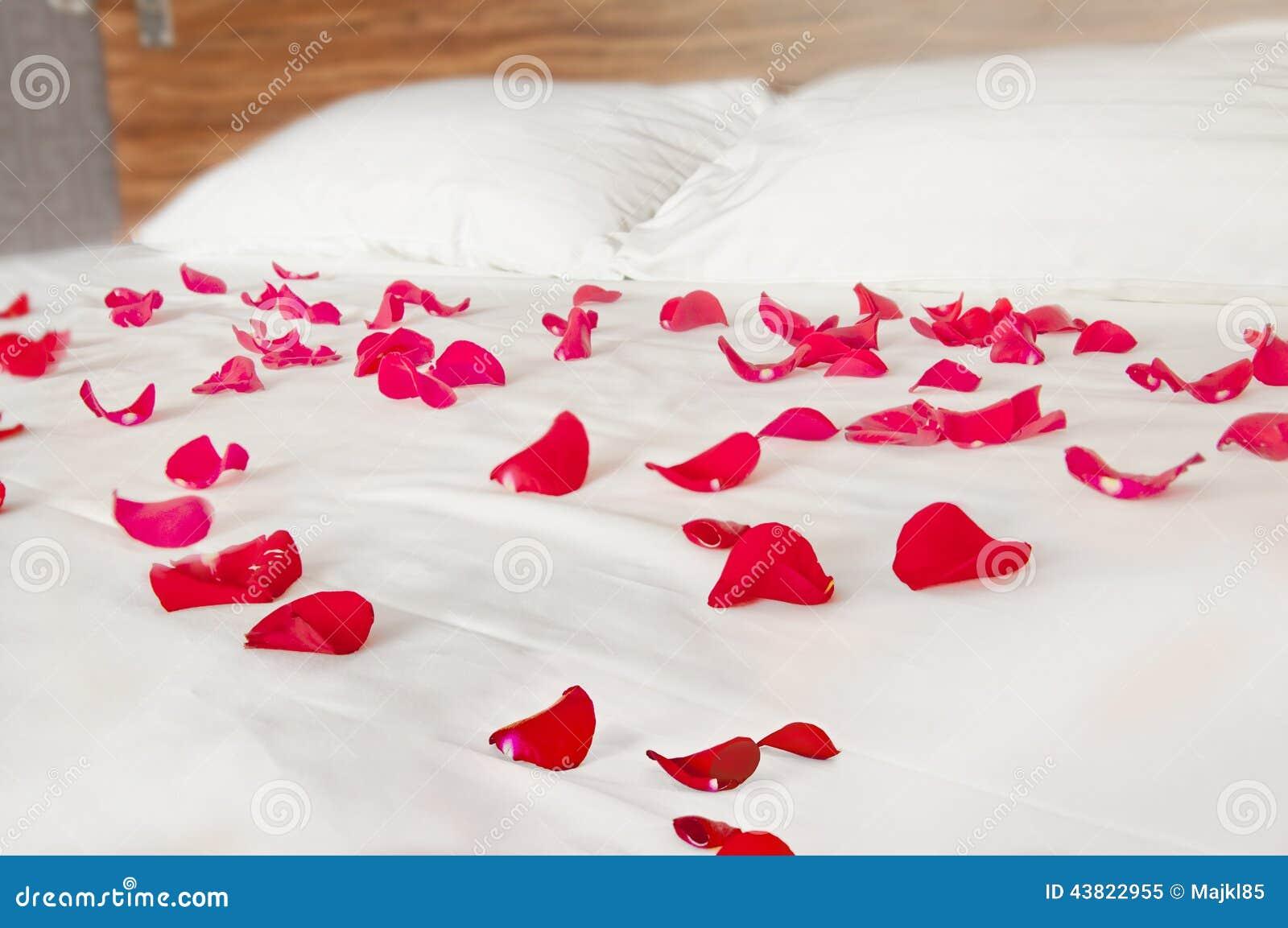 Romantic bedroom rose petals - Bedding Bedroom Petals Romantic Rose