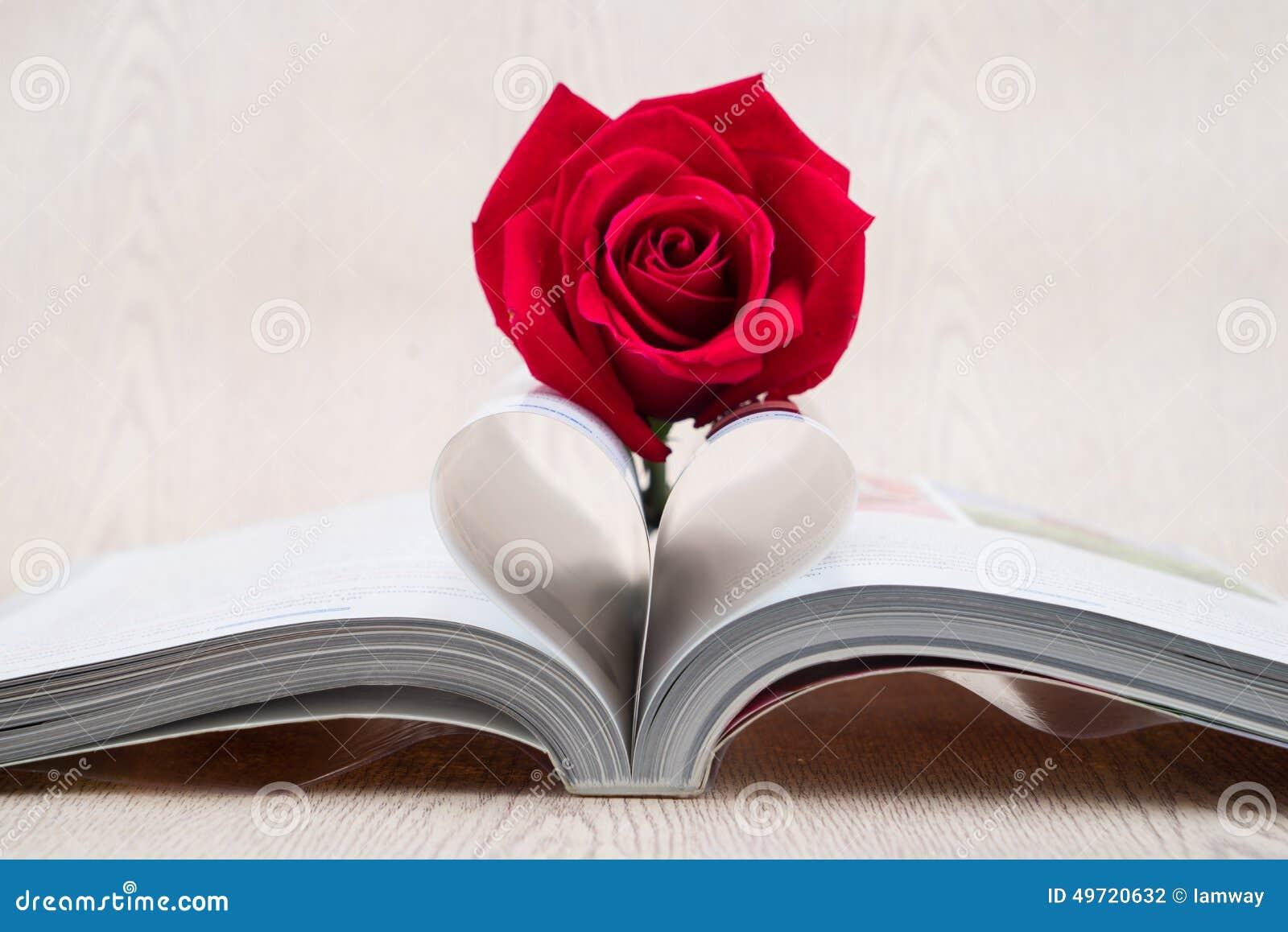Rose a placé sur la page de livres qui est pliée dans une forme de coeur
