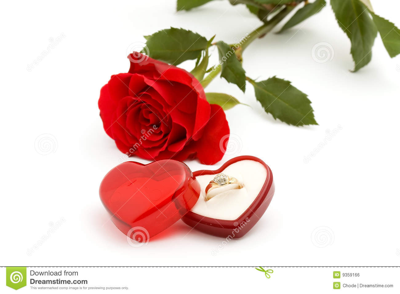 Rose And Ring Royalty Free Stock Image Image 9359166