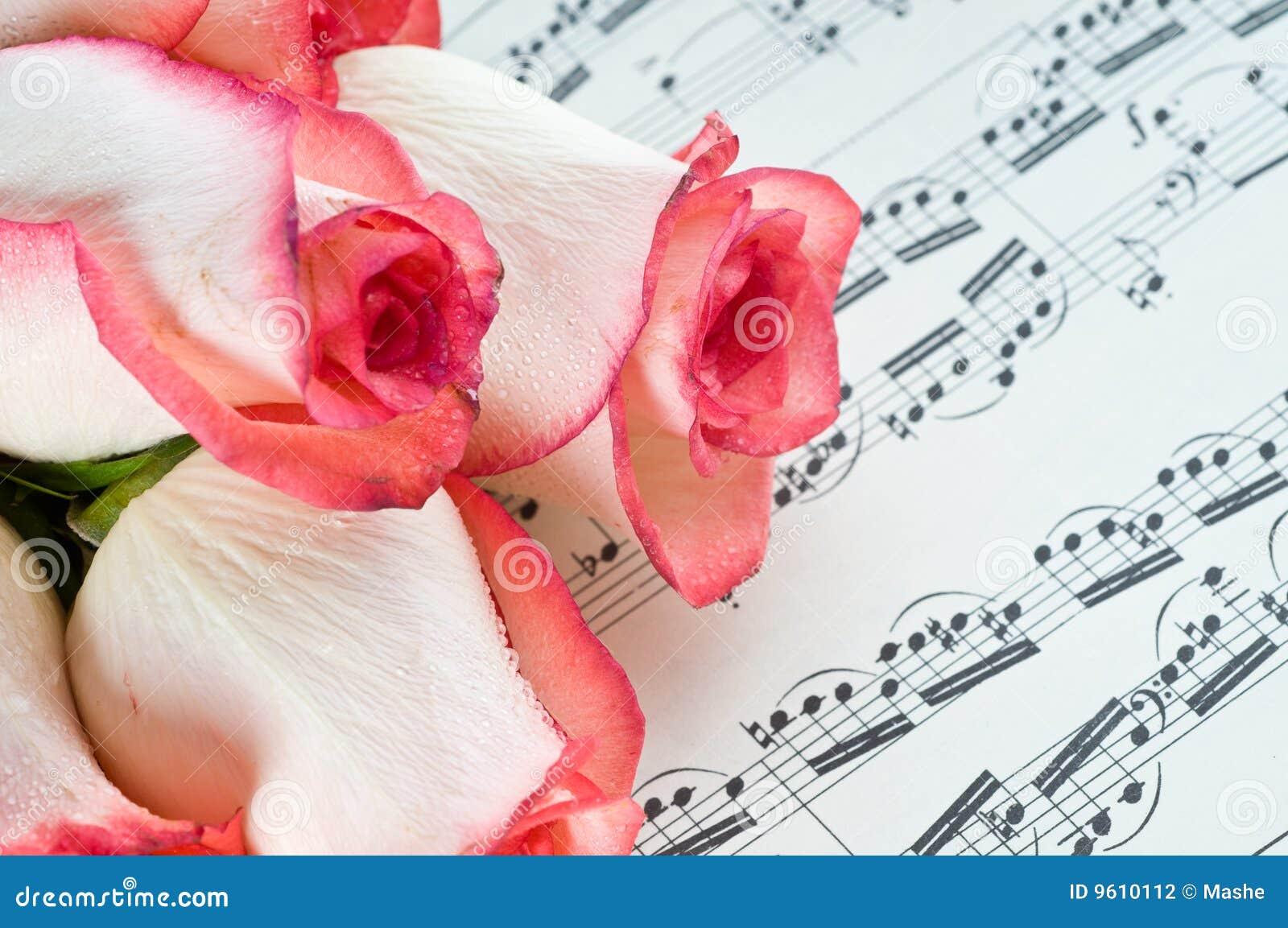 Rose rose et note