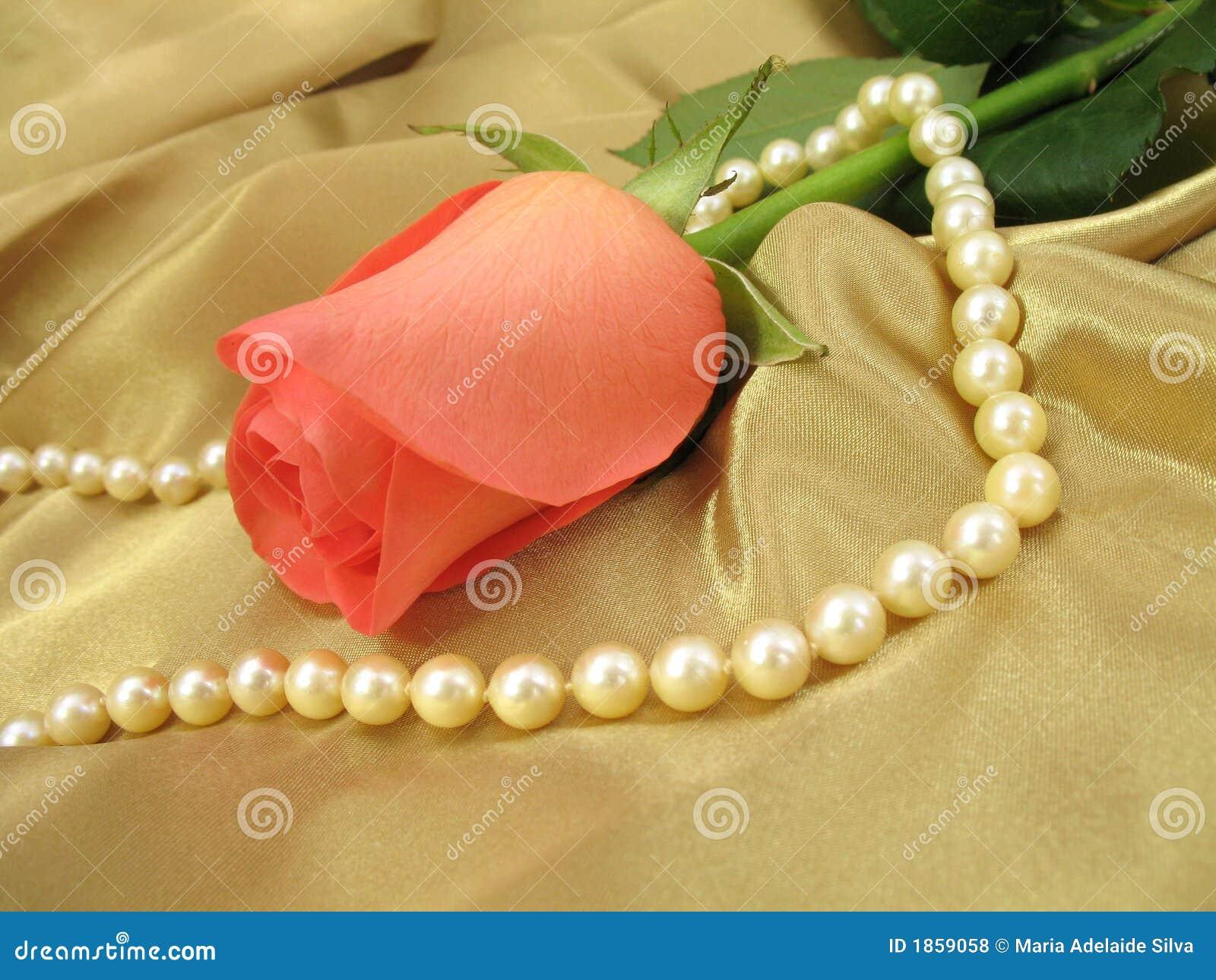 Rose rose et perles sur le satin d or