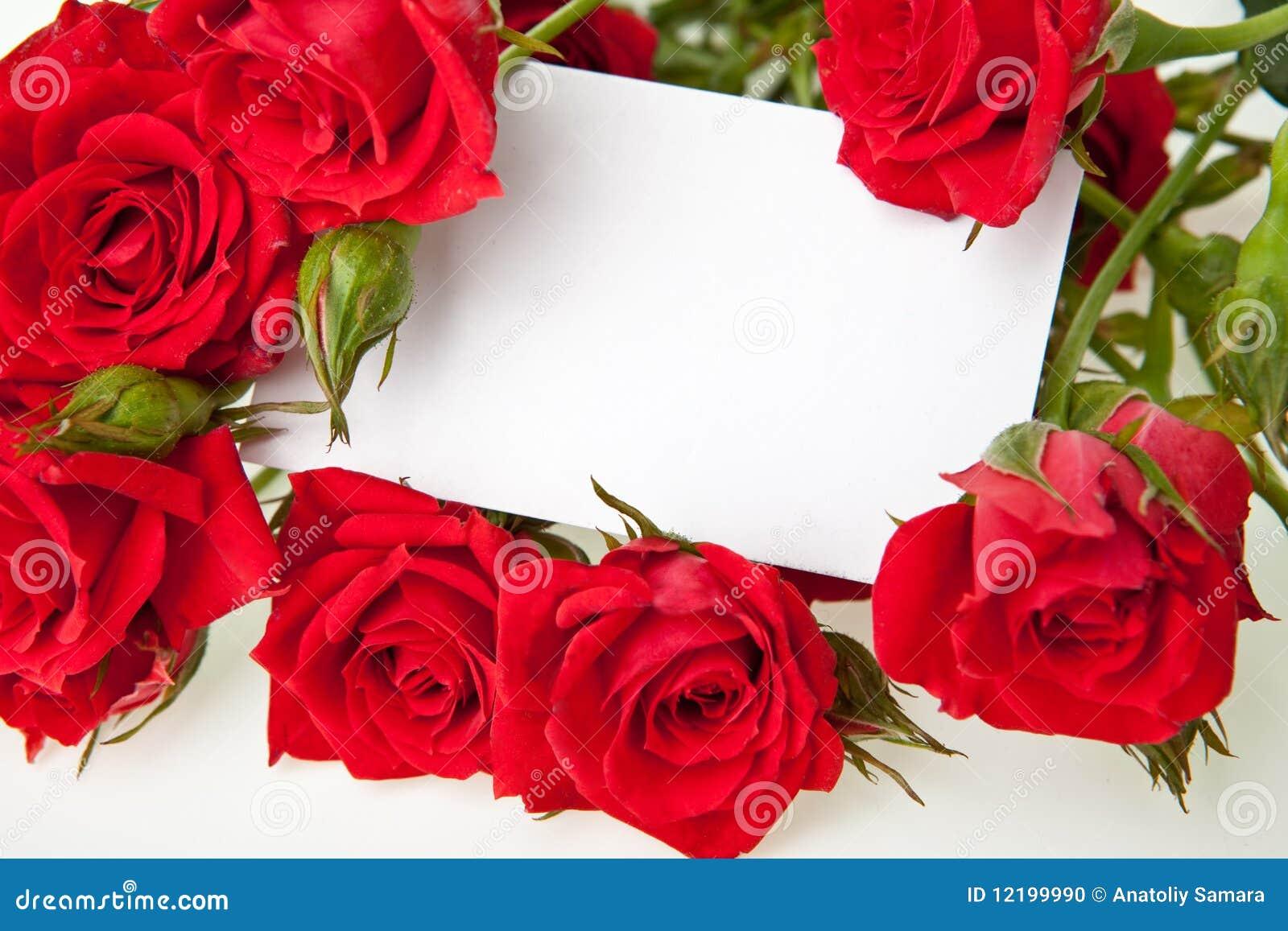 Rose rosse e scheda in bianco dell invito