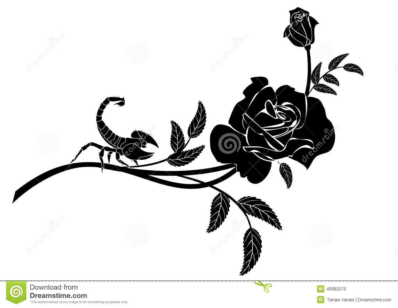 rose and scorpion stock vector image of design passion