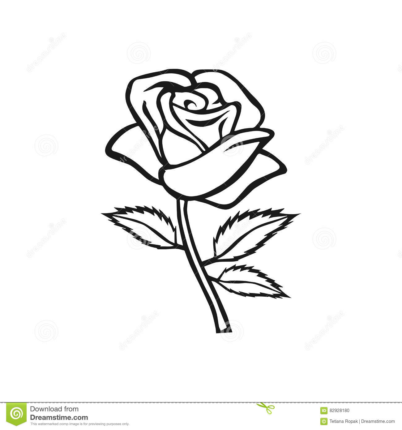White Rose With Stem Drawing | www.imgkid.com - The Image ...