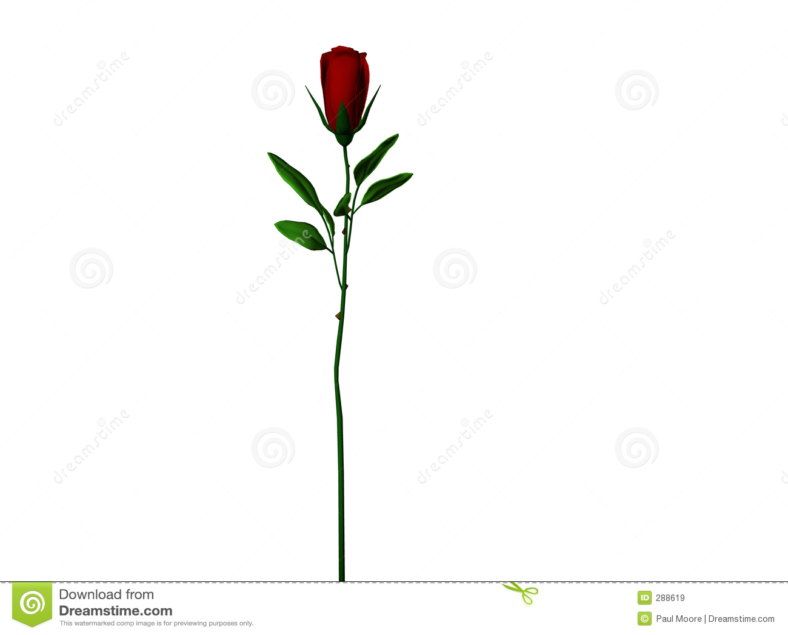 Rose stem för mörk lång red