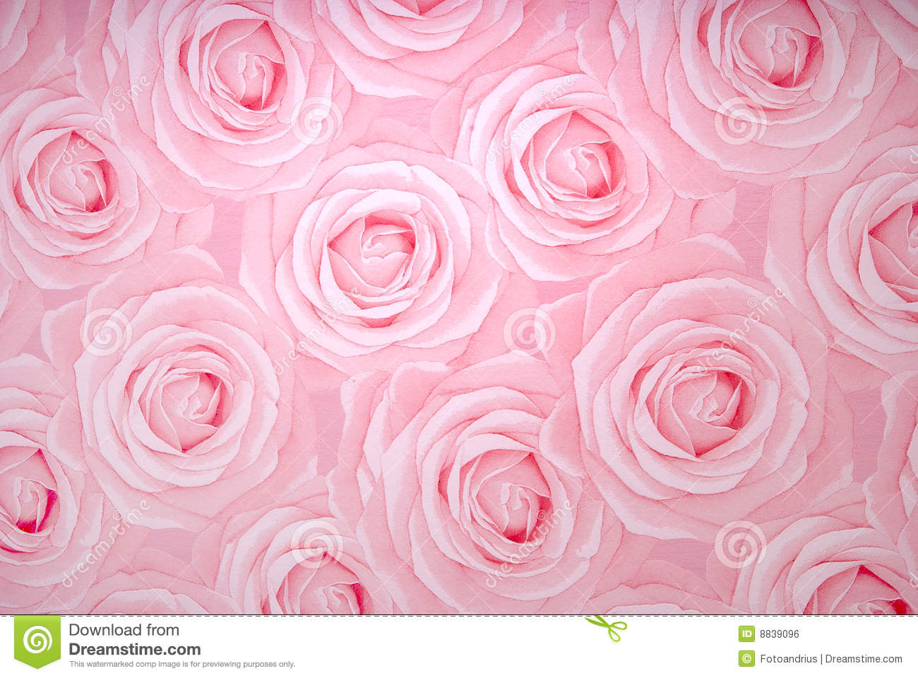 Rose Texture Royalty Free Stock Image Image 8839096
