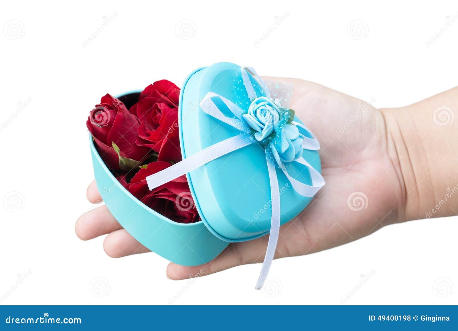 Download Rose und Inneres stockfoto. Bild von floral, blau, schön - 49400198