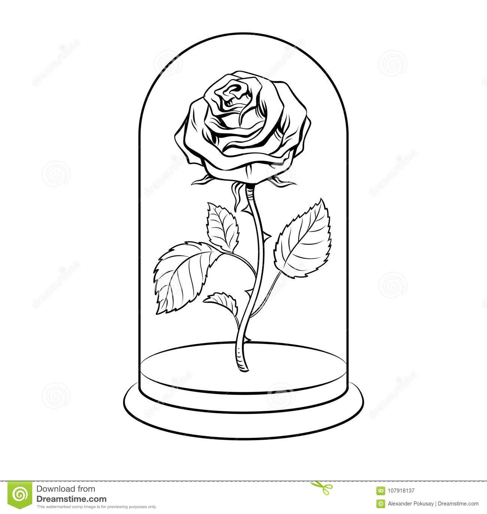 Rose Under Glass Cap Coloring Book Vector Stock Vector ...