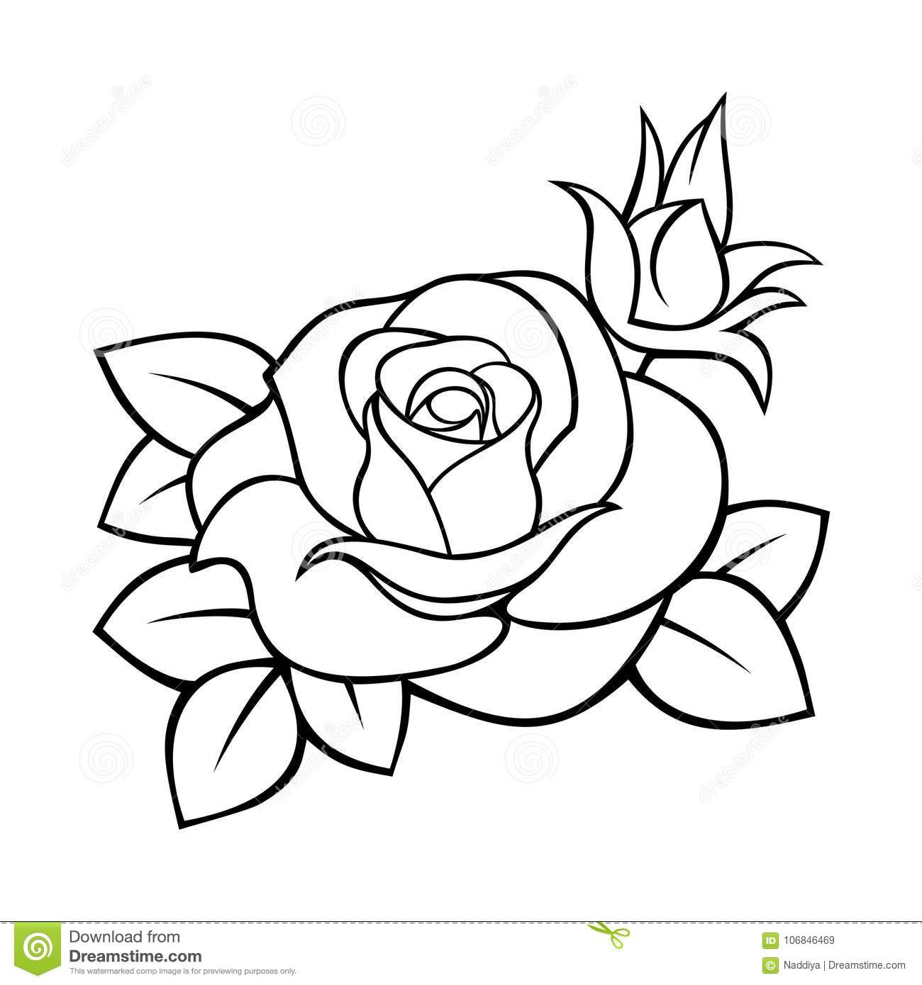 Rose Vector Black And White Contour Drawing Stock Vector