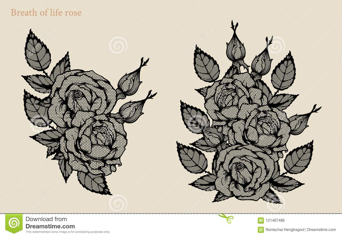 Line Drawing Of Rose Plant : Rose vector lace by hand drawing art highly detailed in