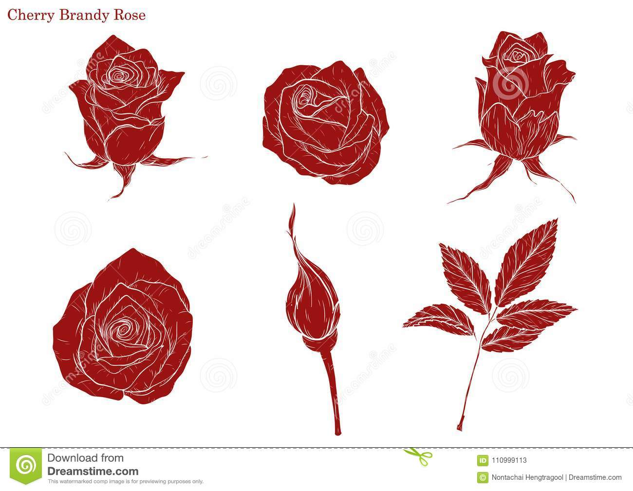 Simple Rose Garden: Rose Vector Set By Hand Drawing Stock Vector