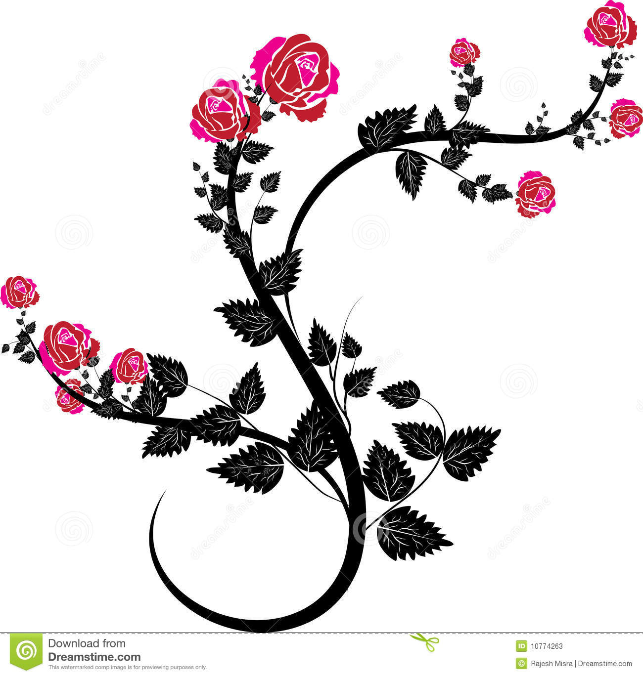 Rose vines9 stock vector. Illustration of floral, classic
