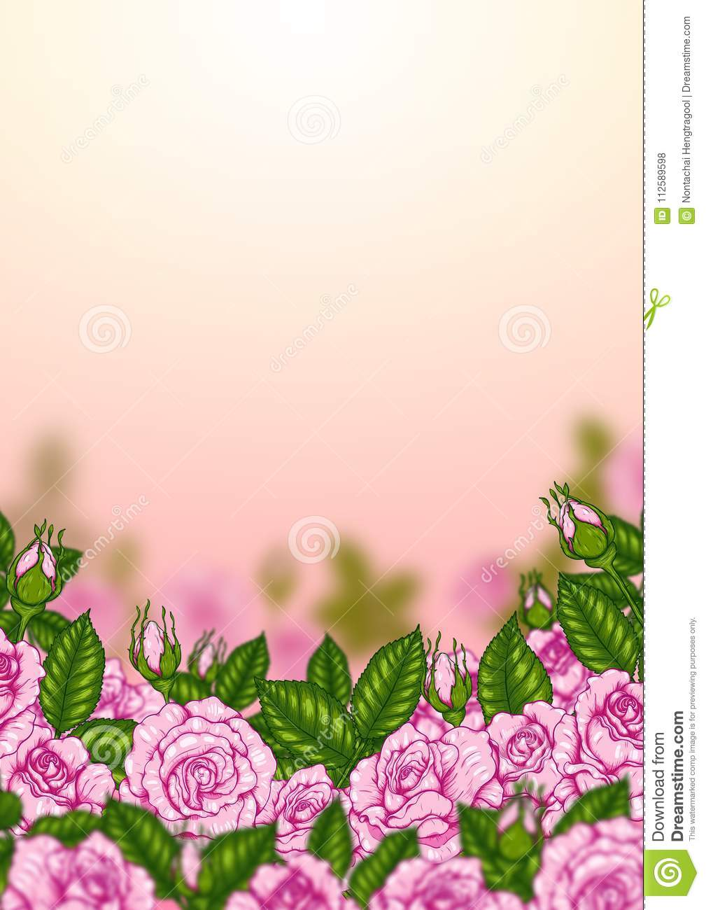 Rose vector by hand drawing.Beautiful flower on white background.Rose art highly detailed in line art style.Rosa queen elizabeth rose for wallpaper