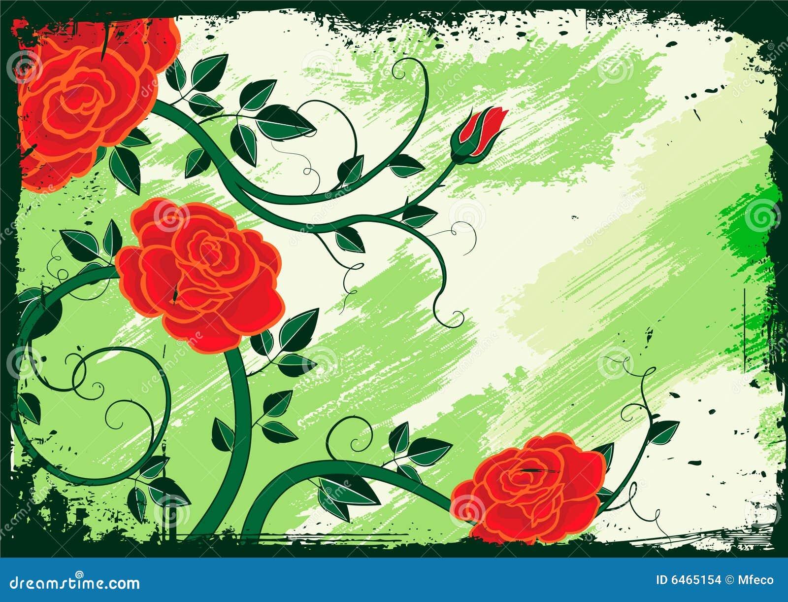 Rose wektora