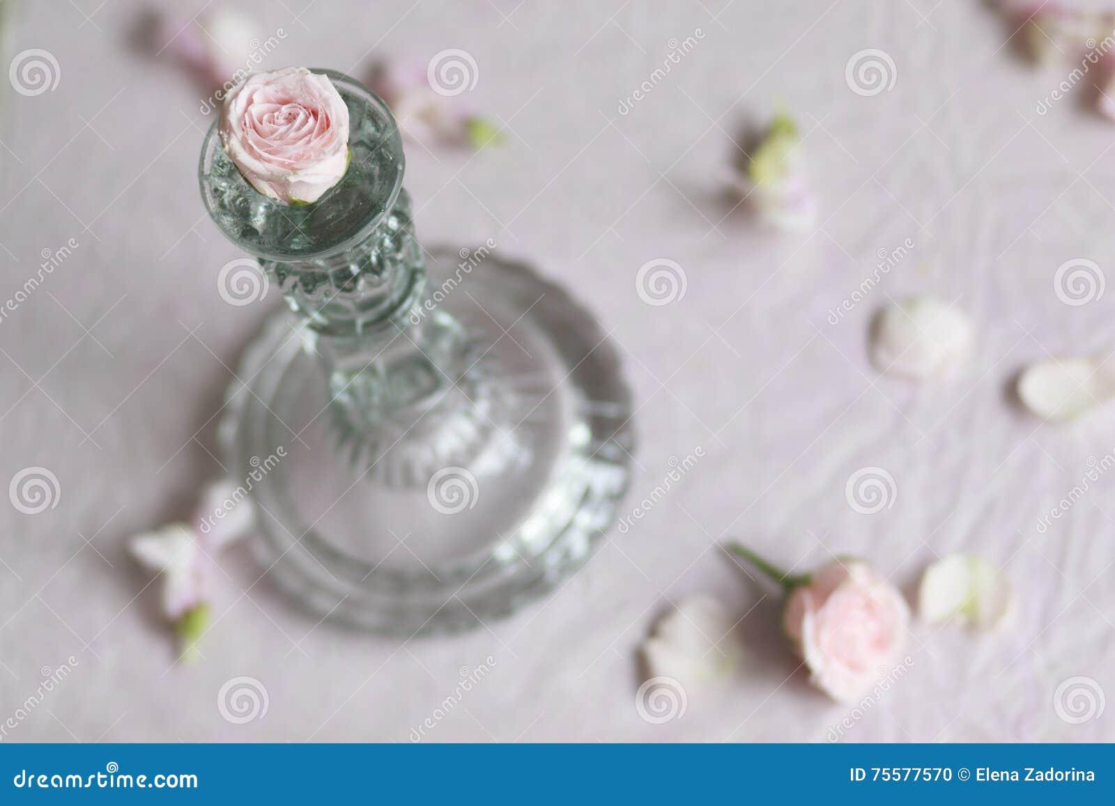 Rosebud avec le chandelier