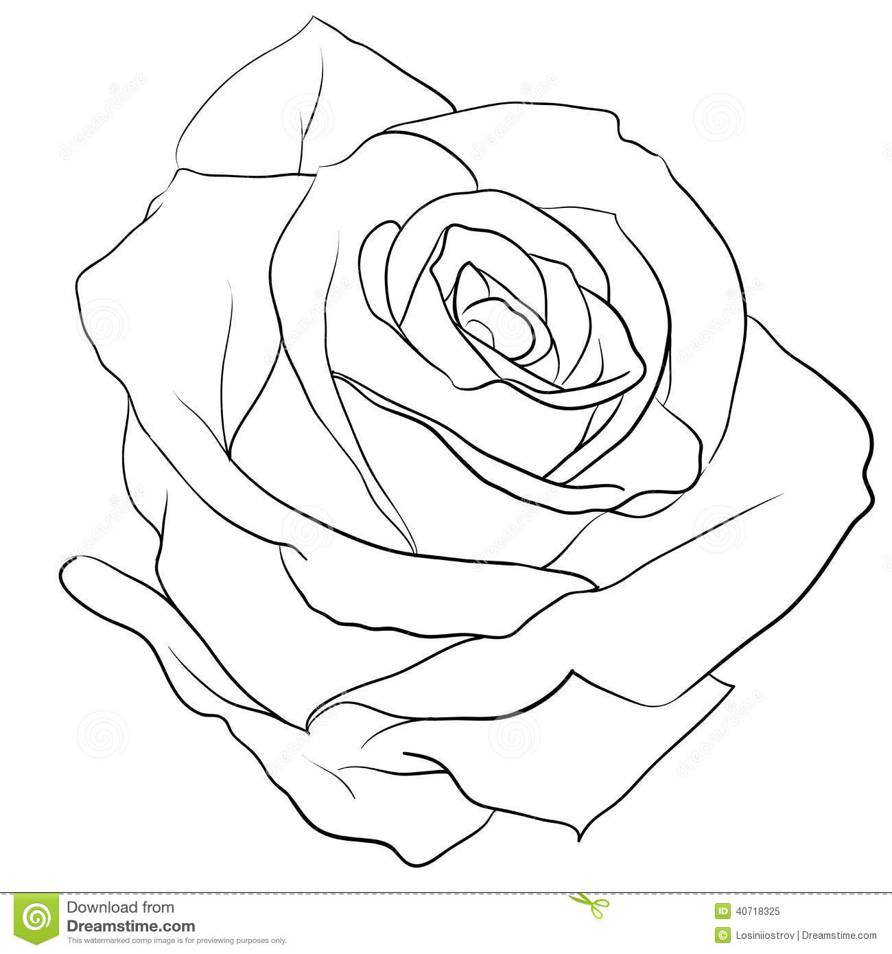 Simple Rose Tattoo Outline: Rosebud Stock Vector. Illustration Of Black, Beauty