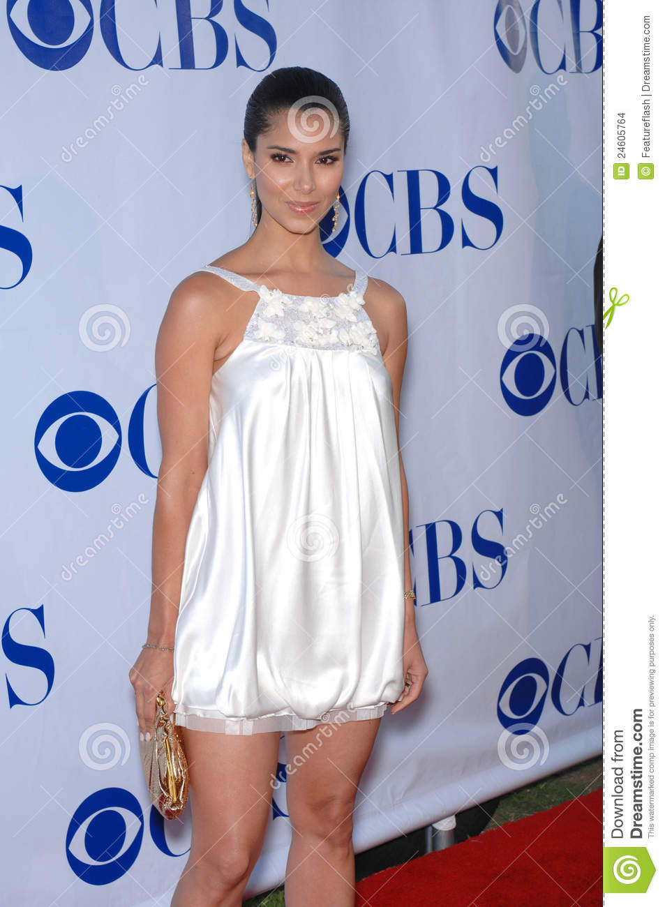 Without a Trace... Roselyn Sanchez Without A Trace