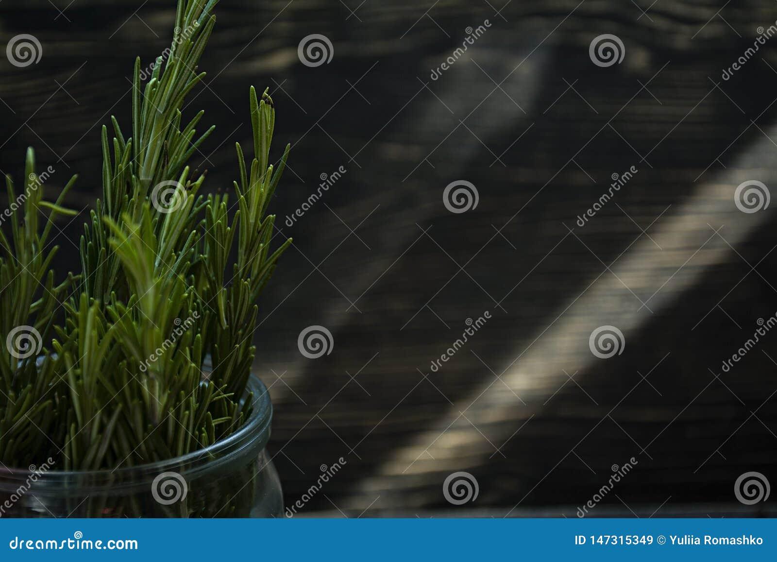 Rosemary en un tarro de cristal, ramas del romero fresco, fondo de madera del vintage