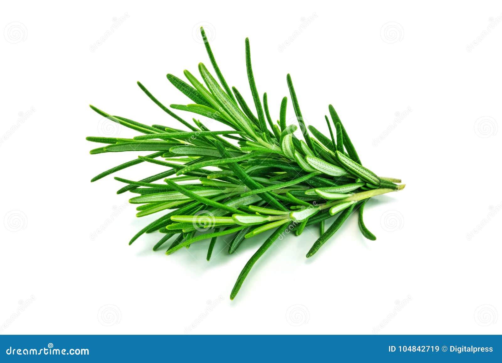Rosemary ha isolato