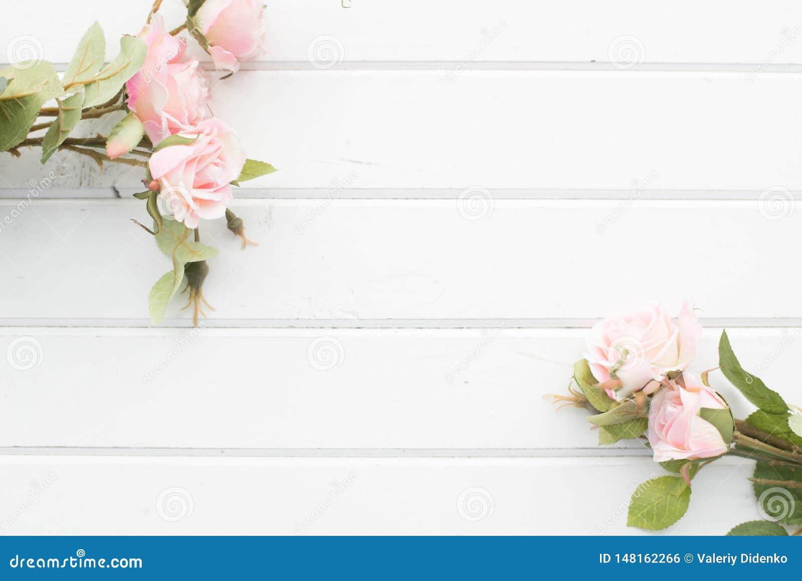 Rosen auf dem Hintergrund von wei?en Brettern