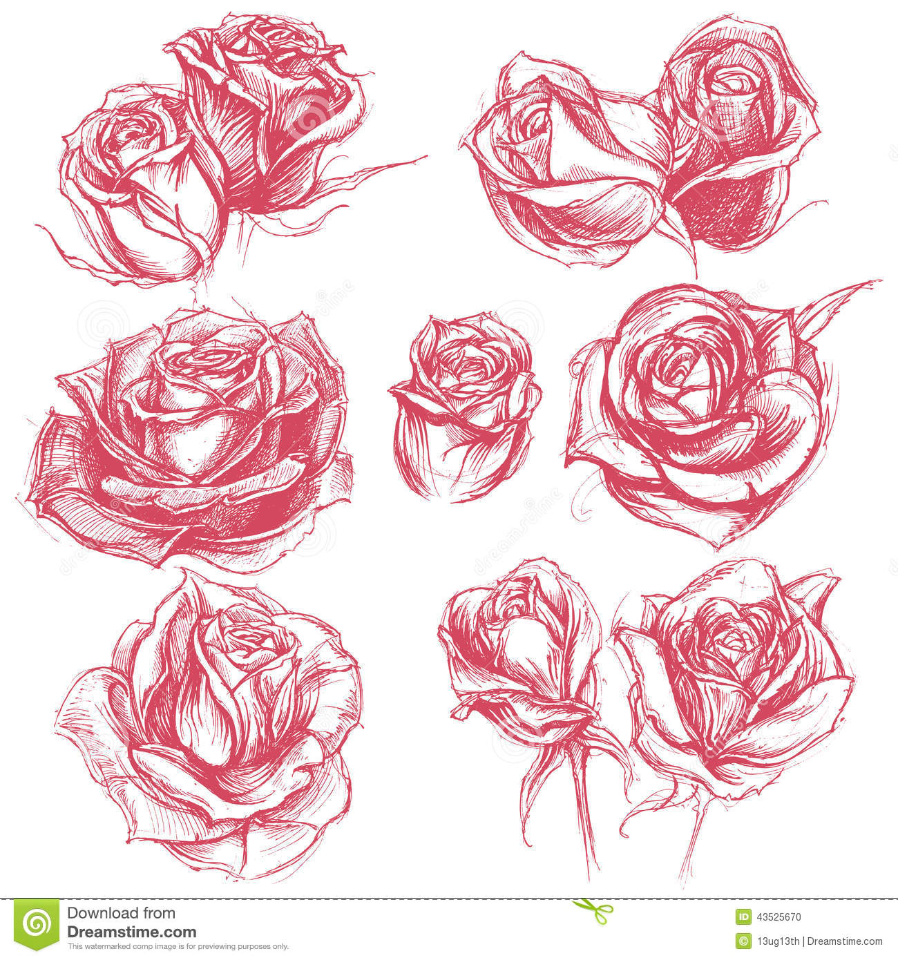 Rose Flower Drawing Tattoo Pics Download