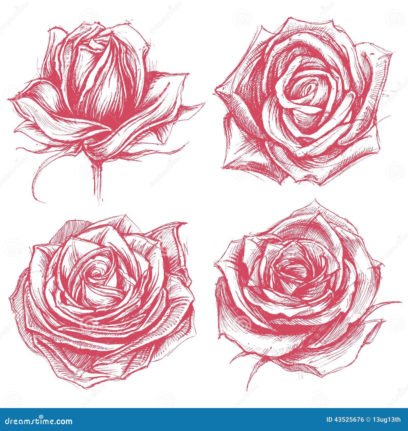 rosen die satz 002 zeichnen vektor abbildung illustration von klassisch eleganz 43525676. Black Bedroom Furniture Sets. Home Design Ideas
