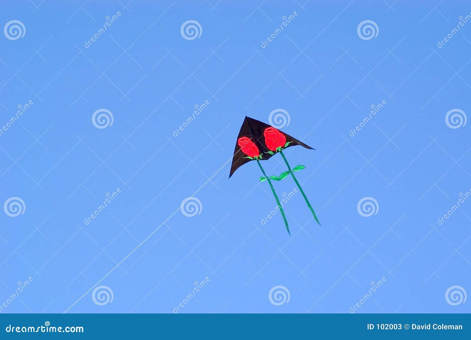 Rosen-Drachen