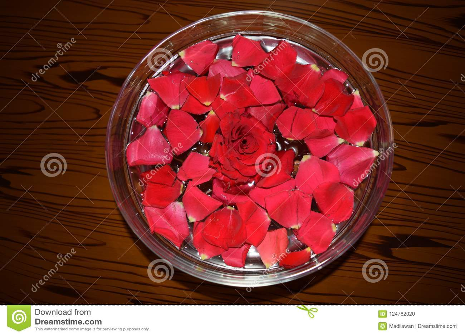 Rosepetals vermelho na bacia enchida água