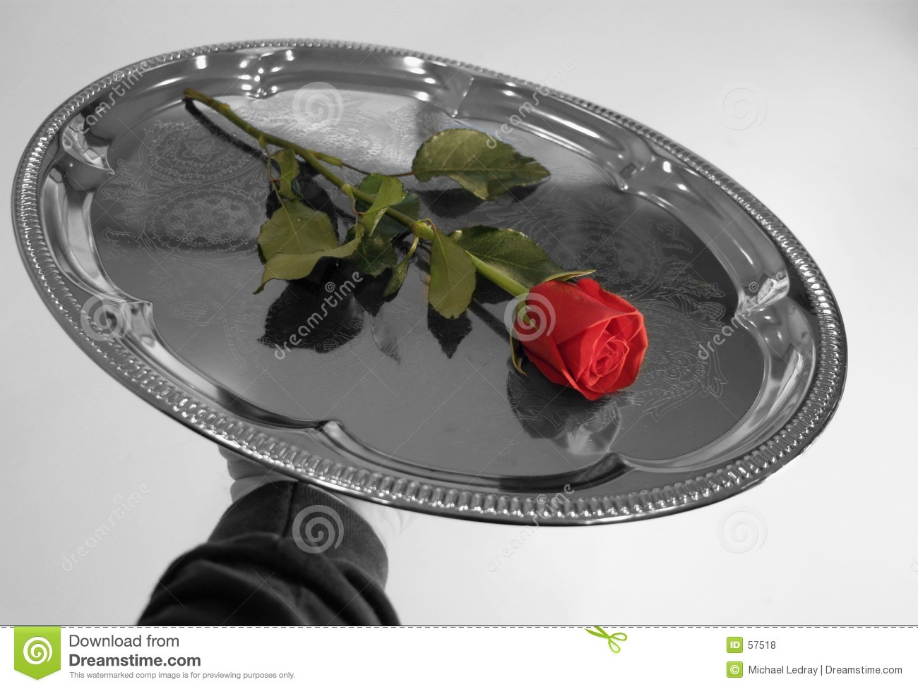 Download Roses 10 de Valentine photo stock. Image du argent, valentine - 57518