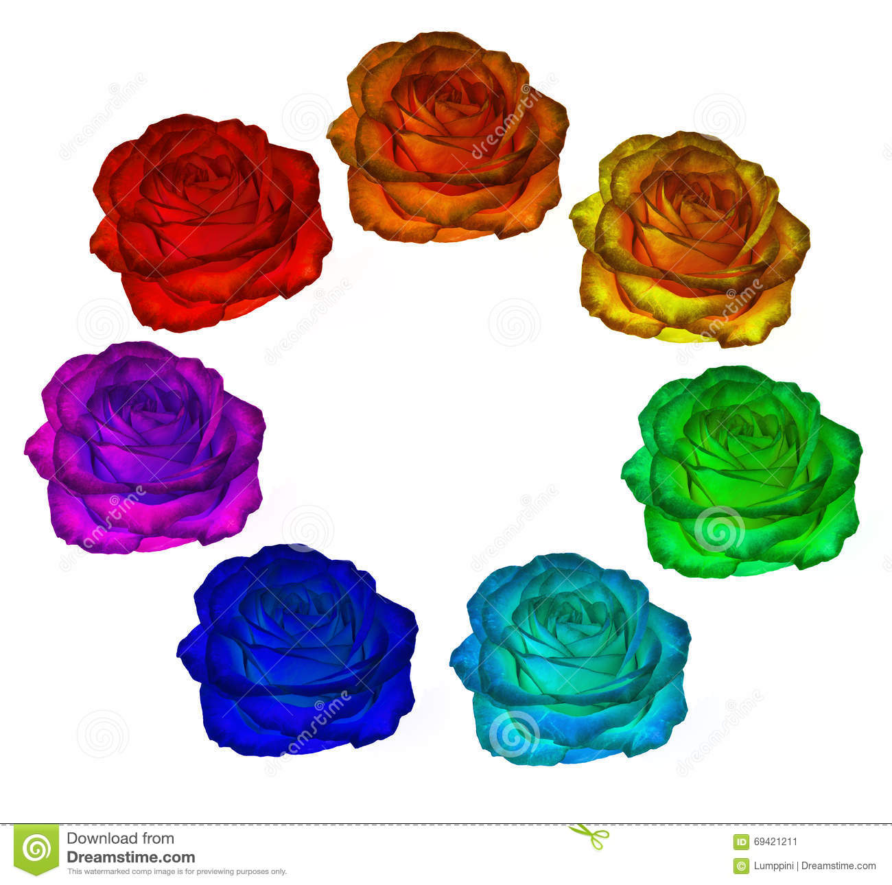 Roses of all colors of the rainbow on a white background. clipart.