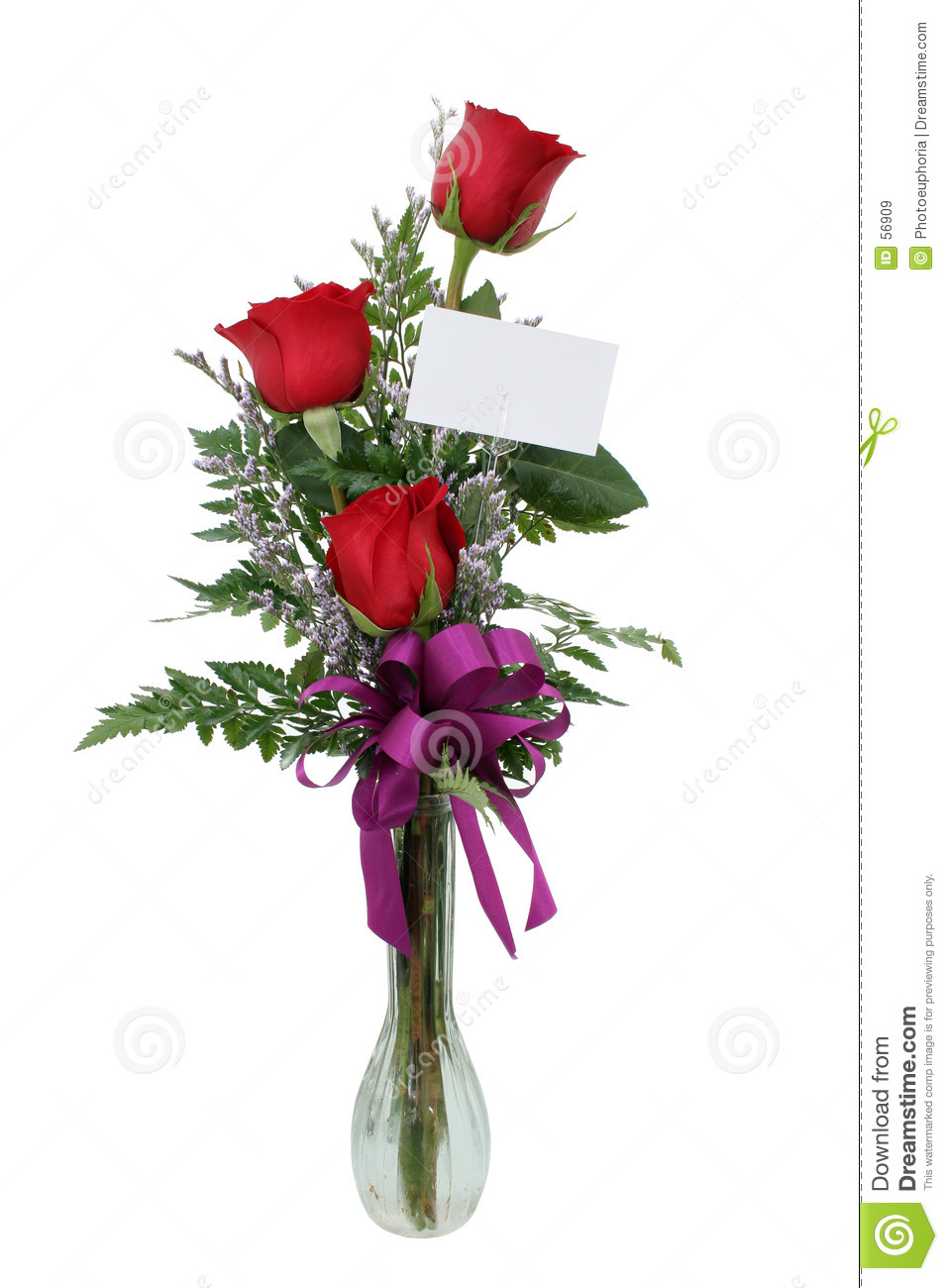 Download Roses Avec La Carte De Cadeau (image 8.2mp) Image stock - Image du glace, isolat: 56909