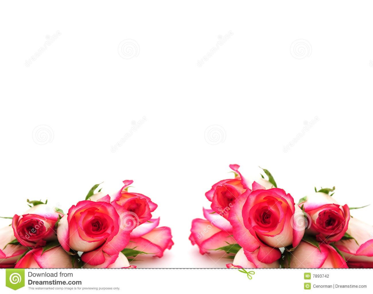 Pink Roses Border | www.pixshark.com - Images Galleries ...