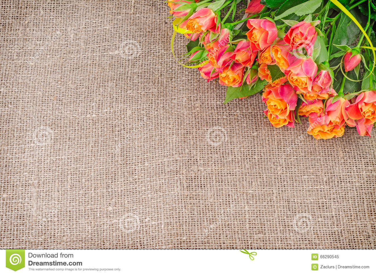 Roses Bouquet On Rustic Jute Background Stock Photo