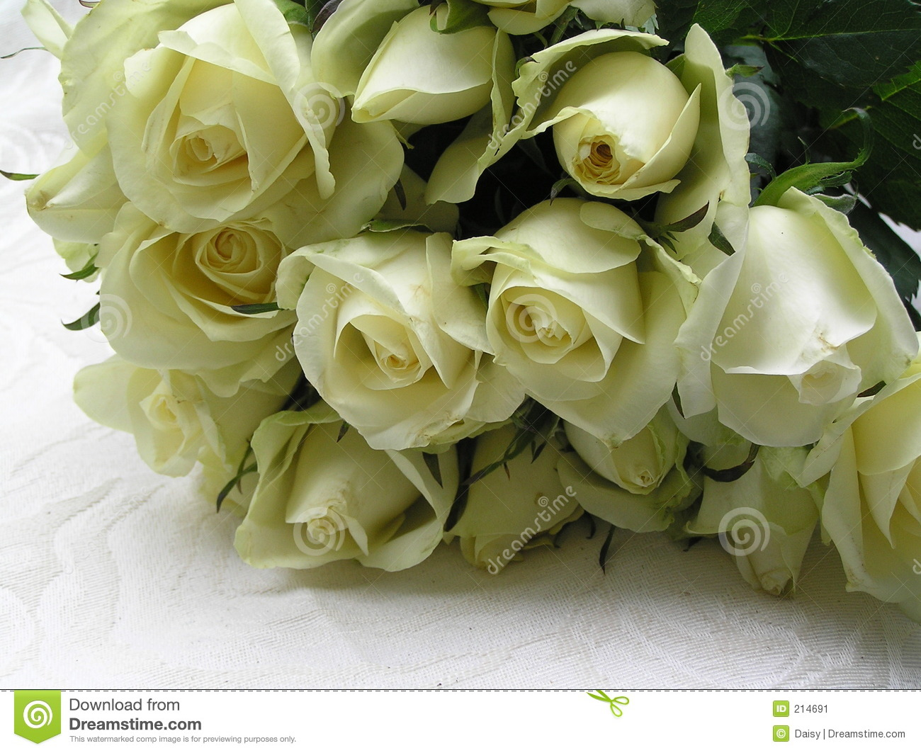 Roses for the bride