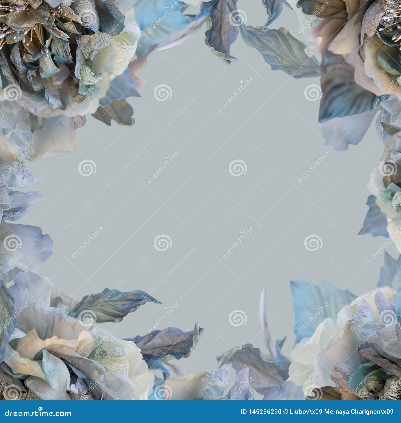 Roses de fleurs sur un fond de couleur Carte de voeux des roses en soie