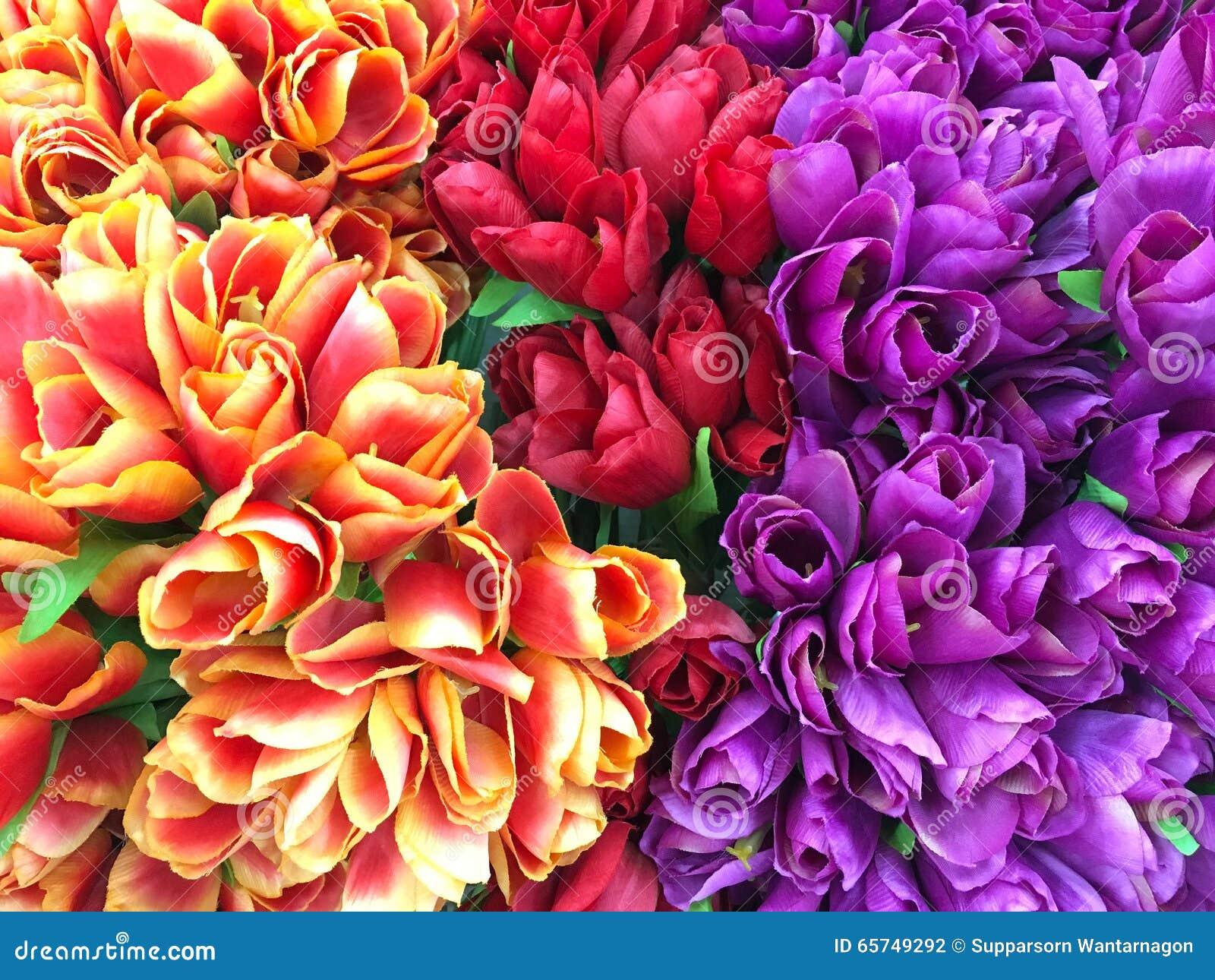 Roses de valentines, fleurs