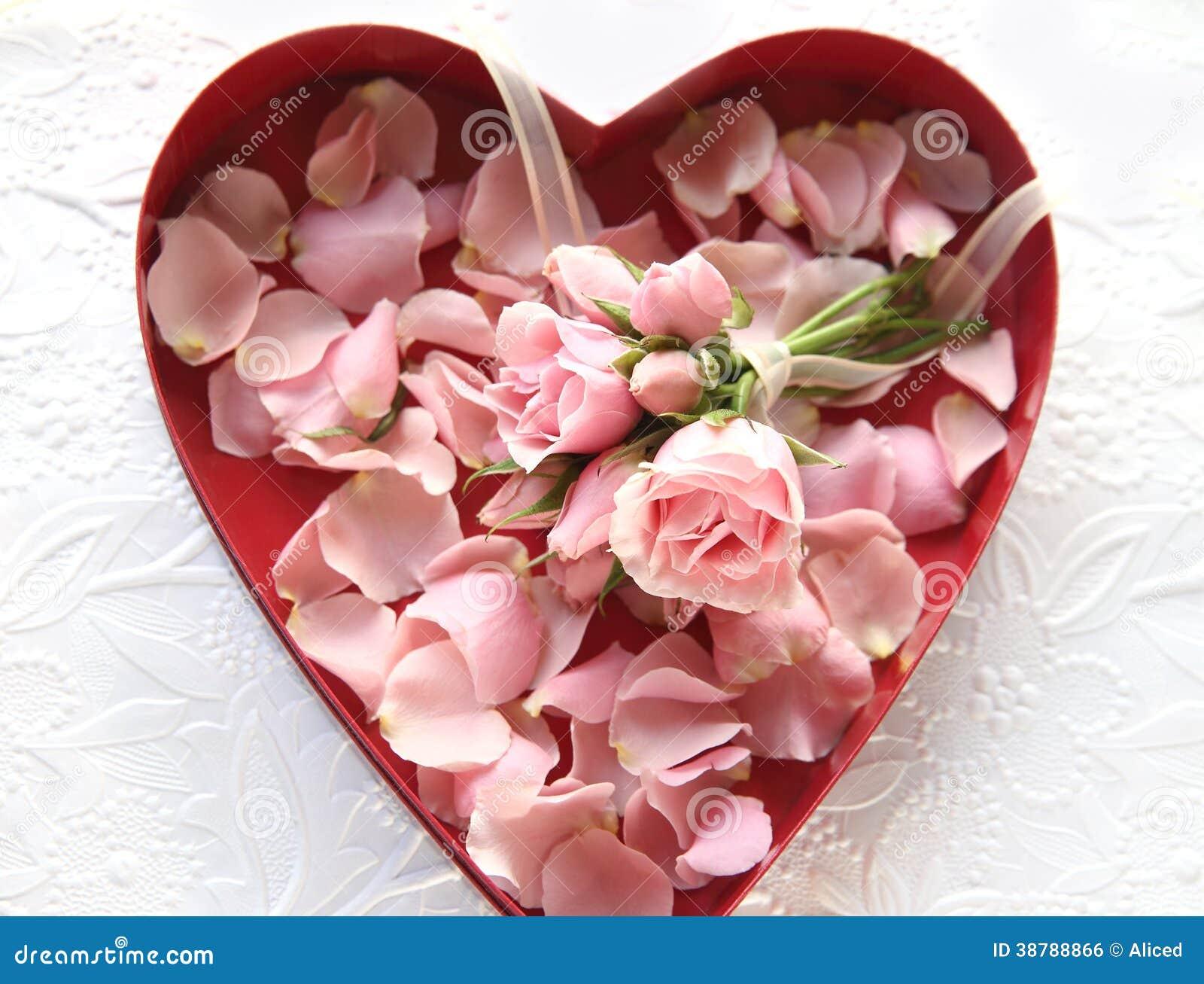 roses fra ches et p tales de rose dans la bo te de coeur photo stock image 38788866. Black Bedroom Furniture Sets. Home Design Ideas