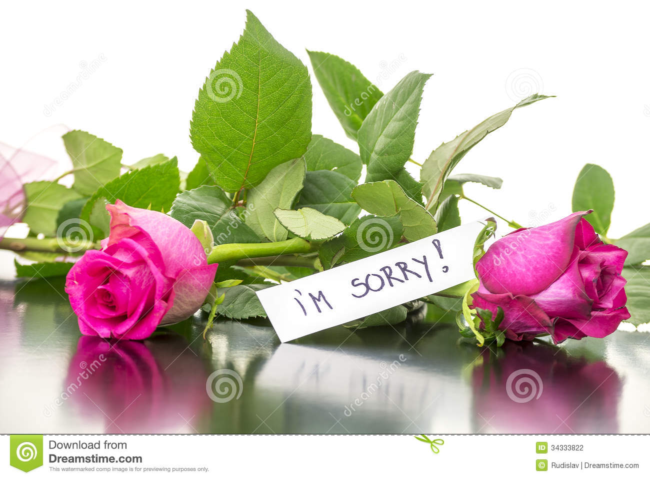 Roses With I'm Sorry Message Stock Photo - Image of gift
