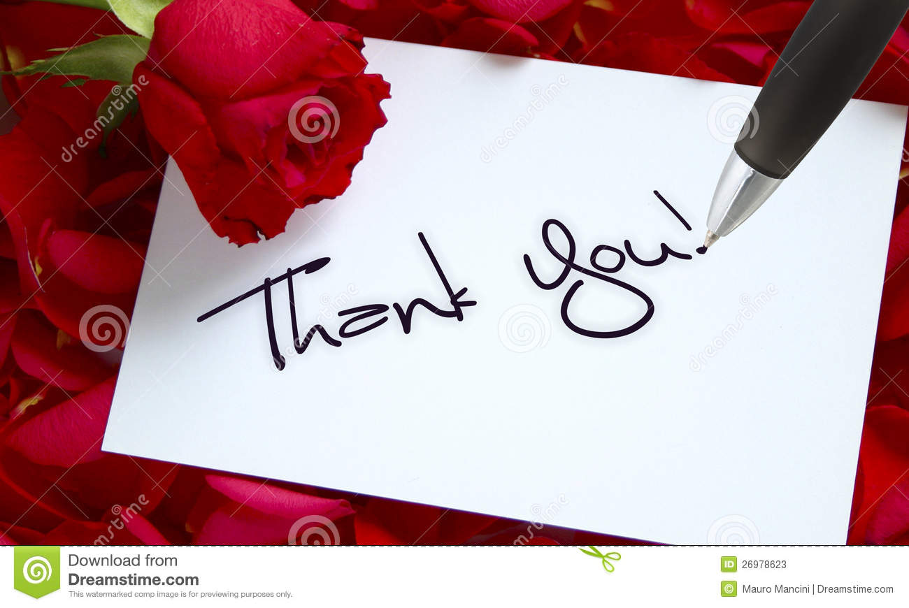Roses And Letter Callligraphy Thank You Stock Image Image Of Grateful Celebration 26978623