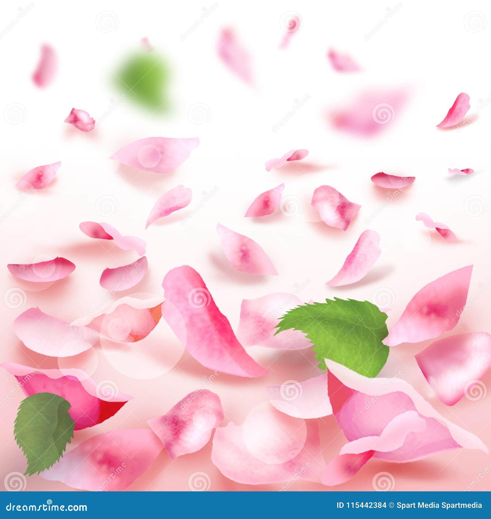 Rose petals falling romance blank frame