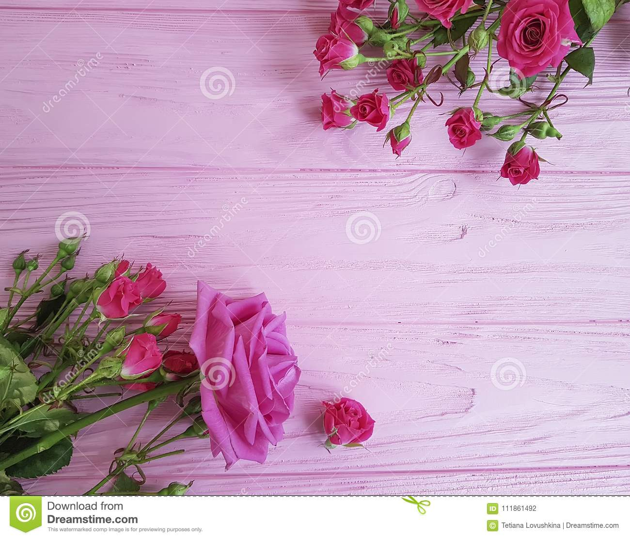 Roses On A Pink Beautiful Greeting Decoration Birthday Wooden Vintage Background Rustic