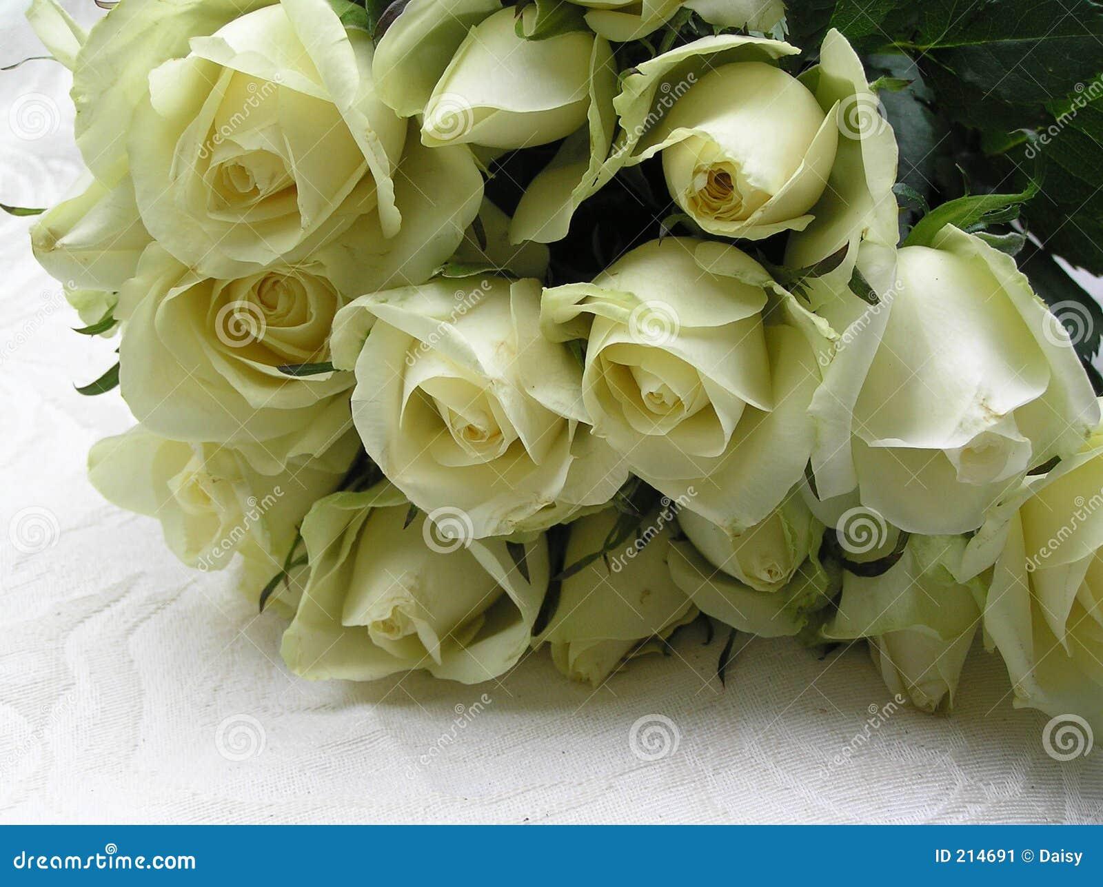 Roses pour la mariée
